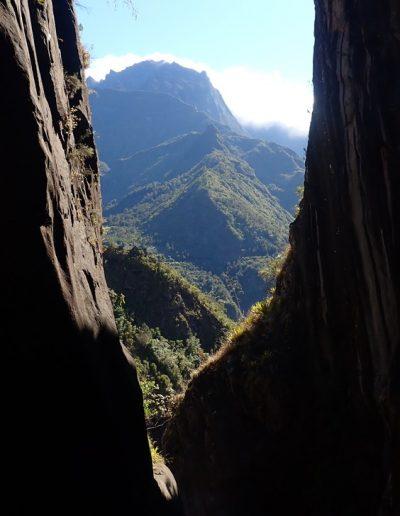 Canyon de Fleur jaune à Cilaos